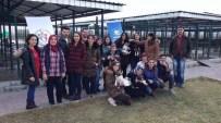 KARAHISAR - Karahisar Gençlik Merkezi'nden Hayvan Barınağına Ziyaret