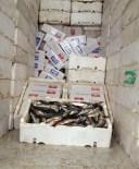 TOSMUR - Sigaraları Kokmuş Balıklar Arasına Saklamışlar