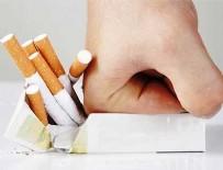 LİSE EĞİTİMİ - Sigarayı Bırakmada Teşvik Edici Kampanya Önerisi