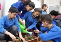 ORGANİK GIDA - Minik Öğrencilere Organik Tarım Yapma Fırsatı