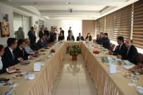 KAZıM KARABULUT - Düzce Ankara'da Tanıtılacak