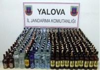 VOTKA - Yalova'da 328 Litre Kaçak İçki Ele Geçirildi