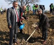 FİDAN DİKİM TÖRENİ - 21 Mart Dünya Ormancılık Günü Ve Ağaç Bayramı Kutlama Töreni