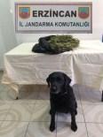 Jandarma'dan Uyuşturucu Madde Operasyonu