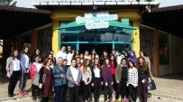 ÇOCUĞA ŞİDDET - Kız Meslek Öğrencileri'nden Çocuk Hakları Okuluna Ziyaret