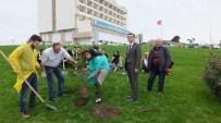 Burhaniye'de Üniversiteliler Okul Bahçesine Ağaç Dikti