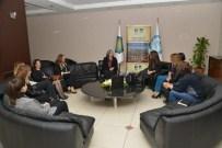 MITANNI - Diyarbakır İş Kadınları Derneği'nden Kışanak'a Ziyaret