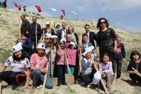 FİDAN DİKİM TÖRENİ - Sarayköy İlçesinde 3 Bin Fidan Toprakla Buluştu