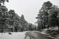 CANDARLı - Egeli Yağmur Beklerken Kar Yağdı