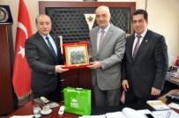 MUSTAFA ÇETİNKAYA - Bursa Kent Konseyi'nden Dağ Yöresine Destek Ziyareti