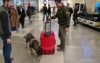 APRON - Atatürk Havalimanı'na Yeni Güvenlik Önlemleri