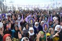 MUSA ANTER - Yüksekova'da Kadınlar Günü Kutlandı