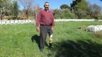 Burhaniye'de Engelli Adil Örnek Arıcı Oldu