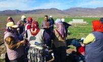 Başkan Tutal, Haşhaş Tarlasında Kadın Çapacıları Ziyaret Etti