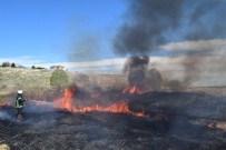 KAYISI BAHÇESİ - Malatya'da Yangın