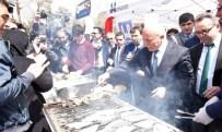 HAMSİ FESTİVALİ - Büyükşehir Ve AÜ'den Balık Şenliği