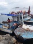 AKDAMAR ADASı - Van Gölü'nde İnci Kefali Avlanma Yasağı Başlıyor