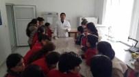 DOKU KÜLTÜRÜ - Minik Öğrenciler Patates Enstitüsünü Gezdi