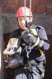 MAHSUR KALDI - Asansör Boşluğunda Mahsur Kalan Kediyi İtfaiye Kurtardı