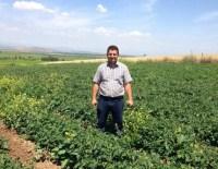 KUMKUYUCAK - Yüzüne kör tapa isabet eden çiftçi öldü
