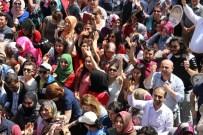 MESİR MACUNU FESTİVALİ - 476. Kez Mesir Yağdı