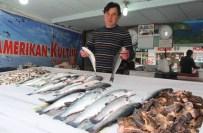 BALIKÇI ESNAFI - Av Yasakları Balık Fiyatlarına Olumsuz Yansıdı