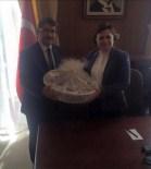 KARAOĞLANLı - Başkan Çelik Yatırımlar İçin Ankara'da