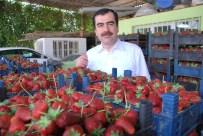 MEHMET ERDEM - Erdem; 'İndirim Tüm Çiftçilerimize Hayırlı Olsun'