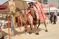 ÇEYİZLİK EŞYA - Kermeste 106 Bin Liraya Deve Satıldı