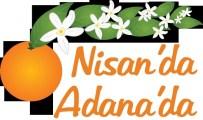 ATIL KUTOĞLU - Uluslararası Portakal Çiçeği Karnavalı Başlıyor
