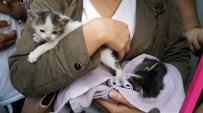 HALİT ERGENÇ - İtfaiyeden Sıradışı Kedi Kurtarma Operasyonu