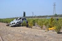 KıZıLDERE - Aydın'da Trafik Kazası Açıklaması 2 Ölü, 1 Ağır Yaralı