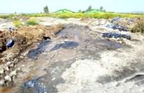 KARıNCALı - Besi Çiftliğinin Dereyi Kirlettiği İddiası