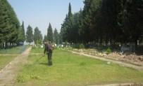 KARAOĞLANLı - Büyükşehirle Daha Huzurlu