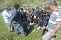 İvrindi'de Aşılama Ve Budama Kursu Tamamlandı