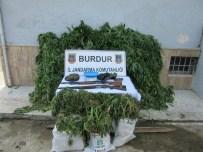 KOCAALILER - Bucak'ta Uyuşturucu Operasyonu