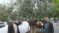 Burhaniyeli Çiftçilerin Hayali Reşitköy Barajı Programa Alındı