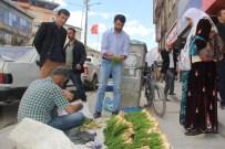 İŞSİZ GENÇLER - Hakkari'de Şifalı Pancar Tezgahları Kuruldu