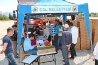 AHMET HAŞIM - Çal'da Üreticilere Fide Dağıtıldı