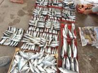 Balıklar Açık Arttırmada