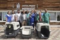 HAYVAN HAKLARı FEDERASYONU - Haytap'dan Doğal Yaşam Merkezine Malzeme Yardımı