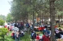 BEŞPıNAR - Adıyaman Kent Konseyi Engellilerle Piknikte Buluştu