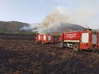 Buğday Tarlasında Çıkan Yangın Ormana Sıçradı