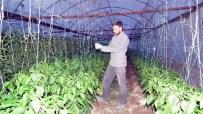 MEHMET ERDEM - Erdem; 'Aydın'da 26 Çeşit Ürünün Yetiştiği Bir Tarım Kenti'