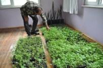 OSMAN GÜL - Hastane Güvenlikçisi Solucandan Organik Gübre Üretti
