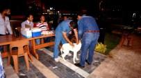 HÜSEYIN AKTAŞ - Sarıgöl'de Av Köpeklerine Kuduz Aşısı Yapıldı