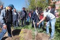 ALI ADA - Umut Çiçekleri Komisyonu Meyve Ağaçlarını Toprakla Buluşturdu