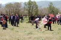 UÇURTMA FESTİVALİ - Güroymak'ta 19 Mayıs Coşkusu