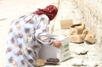 KURU BAKLİYAT - İHH'dan Bombardıman Altındaki Halep'e Yardım