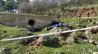 GÖKÇEÖREN - Uludağ Ormanlarındaki Çifte İnfaza Çifte Müebbet Talebi